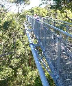 lisa on tree top walk